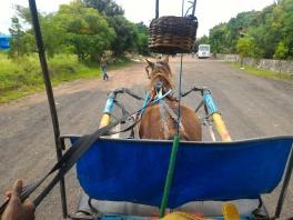 Slow & Easy in Debre Zeit, Ethiopia