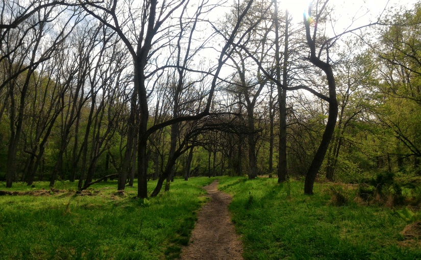 Hike Like a Girl 2018 | Scenes from Patapsco Valley State Park,Maryland